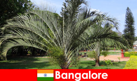 Bangalore's pleasant climate all year round is worth a trip for every foreigner