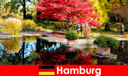 Hamburg a port city with large parks for relaxing holidays