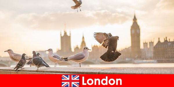 Places to visit in London for international visitors of foreign origin
