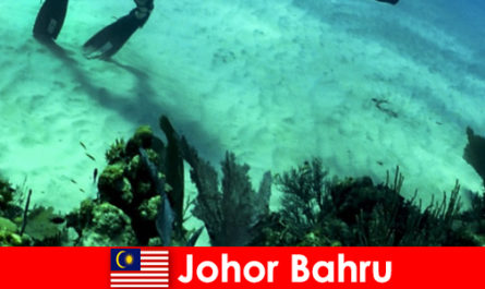 Adventure activities in Johor Bahru Diving, climbing, hiking and much more