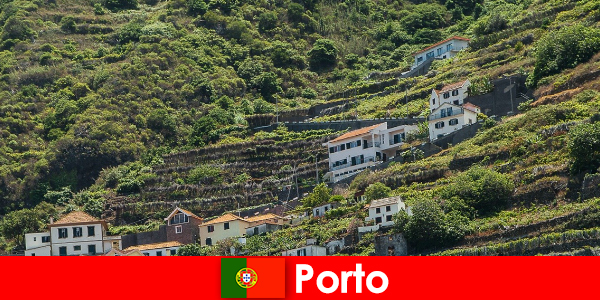 Porto vacation destination for wine lovers from all over the world
