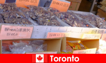 Toronto and its particularly diverse gastronomy leaves no traveler starving