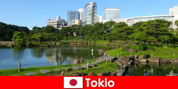 Tourists enjoy old and new traditions in Tokyo Japan up close