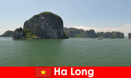 Boat tours for vacationers to the rock giants in Ha Long Vietnam