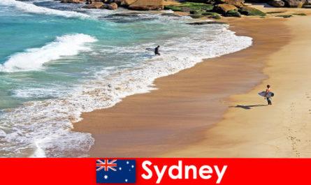 Surf tourists enjoy the ultimate kick in Sydney Australia