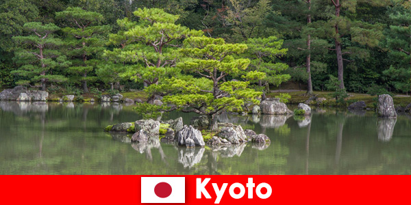 Japanese gardens invite foreign guests for relaxing walks in Kyoto