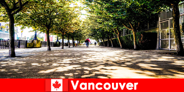 Canada Vancouver's city guides accompany foreign tourists to local corners