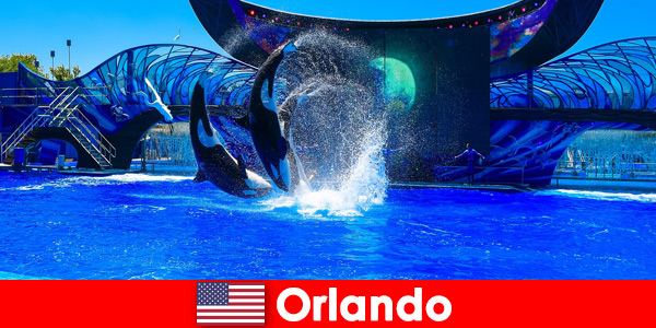 Book individual travel for foreigners in Orlando United States