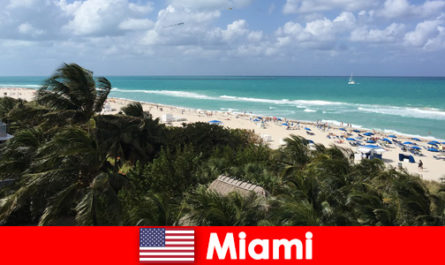 Palm trees sandy waves await long-term vacationers in the paradisiacal Miami United States