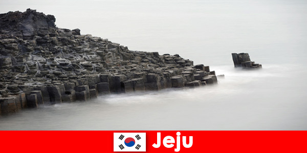 Foreigners are exploring popular excursions in Jeju South Korea